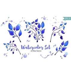 Set of leaves painted in watercolor on white paper vector