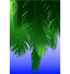 Coconut fronds vector