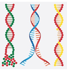 Broken DNA chains vector image vector image