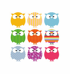 Color owls vector