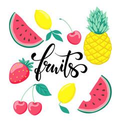 Set of fruits symbol of summer fruits hand drawn vector