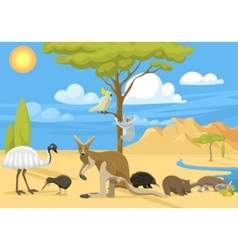 Australia wild life vector image vector image