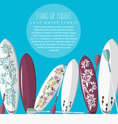 Colorful flat design style of stand up paddl vector image vector image