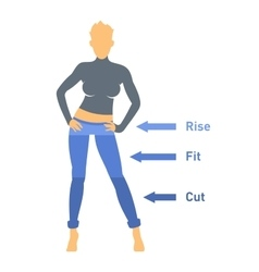 Women Jeans Parts Set vector image