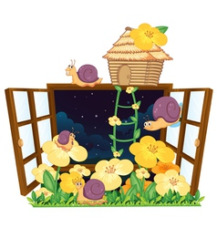 Snails bird house and window vector