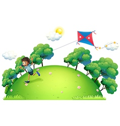 A boy flying a kite vector image