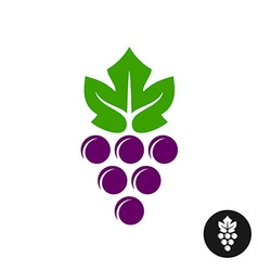 Grape logo Violet grape berry with green leaf vector image