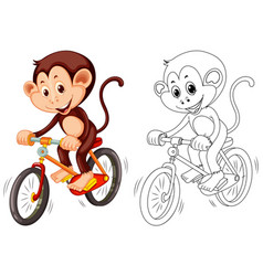 Animal outline for monkey on bike vector