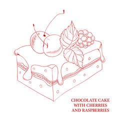 chocolate cake with cherries and raspberries vector image