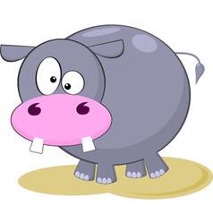 Gray hippopotamus cartoon vector