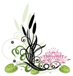 Lotus flower reed vector image
