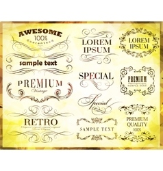 Calligraphic elements and vector