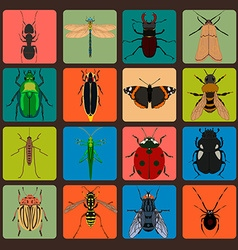 Insect sign set with bug grasshopper spider fly vector