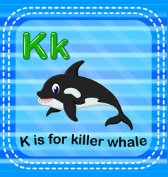 Flashcard letter k is for killerwhale vector