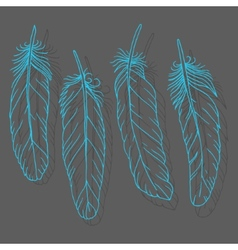 Hand drawn feathers set on dark background vector image