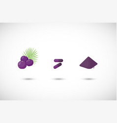 acai berries powder flat icon vector image vector image