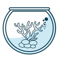 Marine coral in aquarium vector
