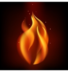 Red burning fire flame on black background vector
