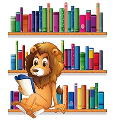 A lion reading a book while sitting on a bookshelf vector