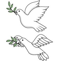 Dove vector image