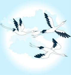 birds in the sky vector image