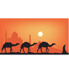 Camels in the desert against the background of vector