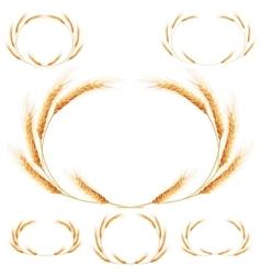 Set of 6 detailed wheat ears eps 10 vector