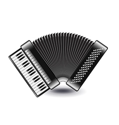 Accordion isolated on white vector