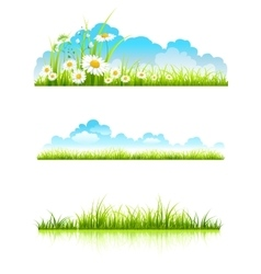 Collection of green grass vector image vector image