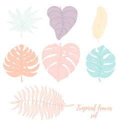 Hand drawn tropical palm leaves set vector