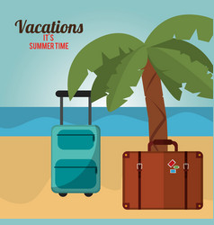 vacations summer time palm tree bagagge beach vector image