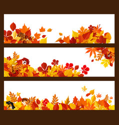 Autumn leaf mushroom and berry banner border vector