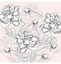 Background with black and white peony vector image vector image