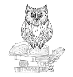 Bird owl on books vector