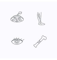 Eye bone fracture and vein varicose icons vector