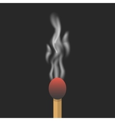 burned match with smoke vector image vector image