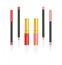 lipsticks and pencils vector image vector image