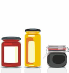 Preserving jars vector