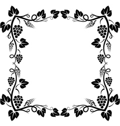 Grapevine frame vector