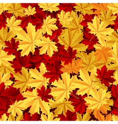 Maple leafs seamless pattern vector