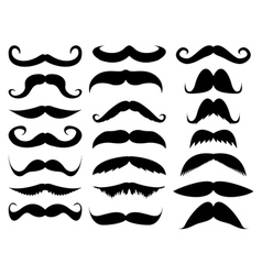 Mustache in a set vector