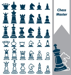Chess master vector