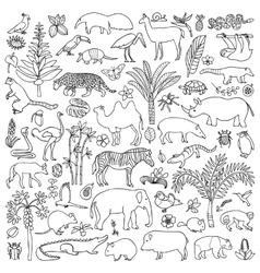 Doodle tropic animals vector