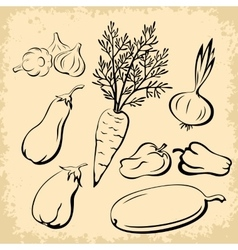 Vegetables pictograms set vector