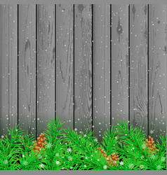 Spruce snow gray wood background vector