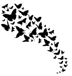 Abstract backdrop with butterflies design vector