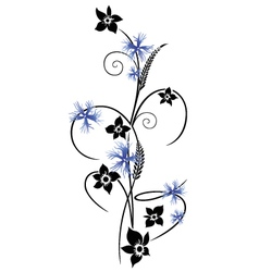 Summer time flowers cornflowers vector
