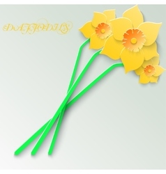 Abstract greeting card with 3d yellow daffodils vector