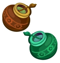 Brown and green gourd with mate tea vector image