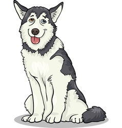 Husky or malamute dog cartoon vector